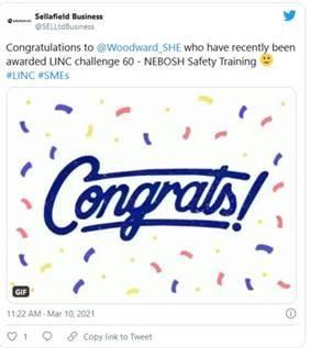 Woodward SHE news Mar 2021