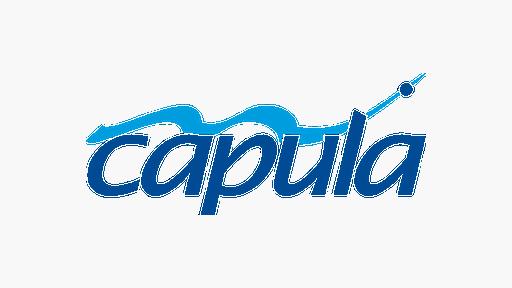 Member Logo Capula NEW Aug 2020 lowres